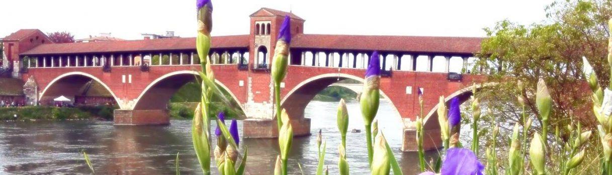 Quatarob Pavia